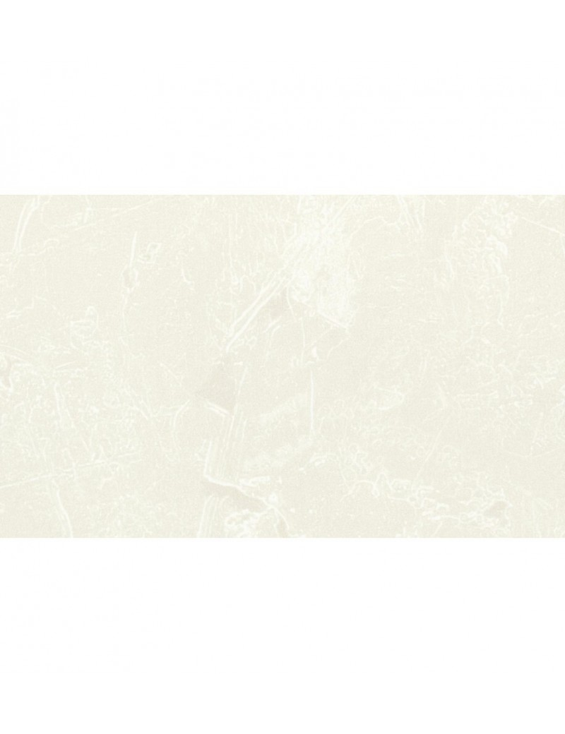 DP200 PREMIUM BLANC RENOVA     1,28M2-PQT  Lattes enveloppéesMEISTER