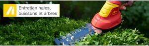 Entretien haies, buissons & ar